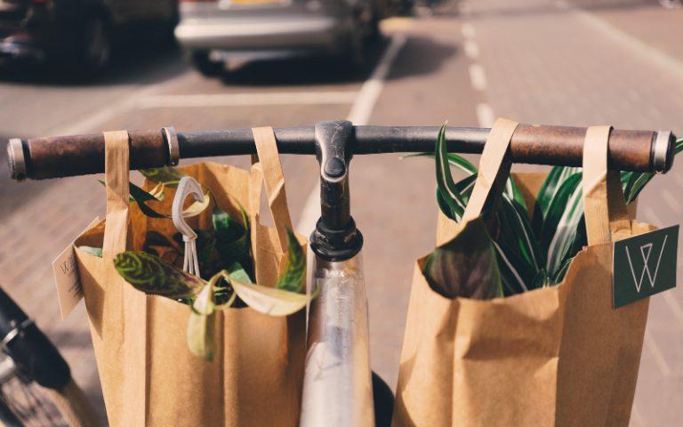 Sustainable Packaging Health Food Branding DCP